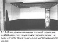 8.16. Помещения для помывки лошадей с панелями из ПУС