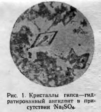 Рис. 1. Гидратированный ангидрит в присутствии Na2SO4