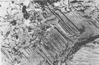 Рис. 13. Микроструктура цементного камня без добавок
