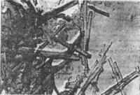 Рис. 15. Микроструктура цементного камня с добавкой С-З+КО СЖК