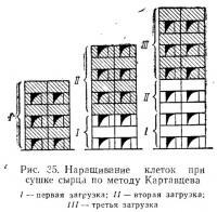 Рис. 35. Наращивание клеток при сушке сырца по методу Картавцева