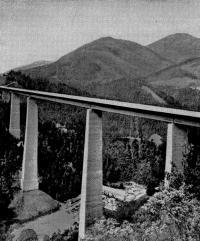 Рис. 53. Общий вид моста «Европа»