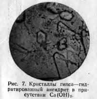Рис. 7. Гидратированный ангидрит в присутствии Са(ОН)2